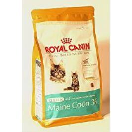 Royal canin Breed  Feline Kitten Maine Coon  400g